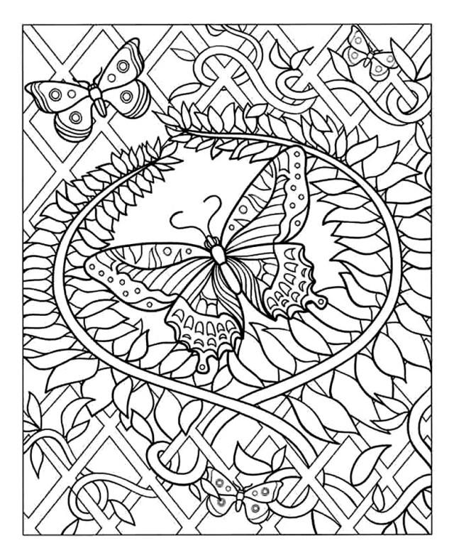 Papillon - Coloriage adulte - Coloriages pour enfants