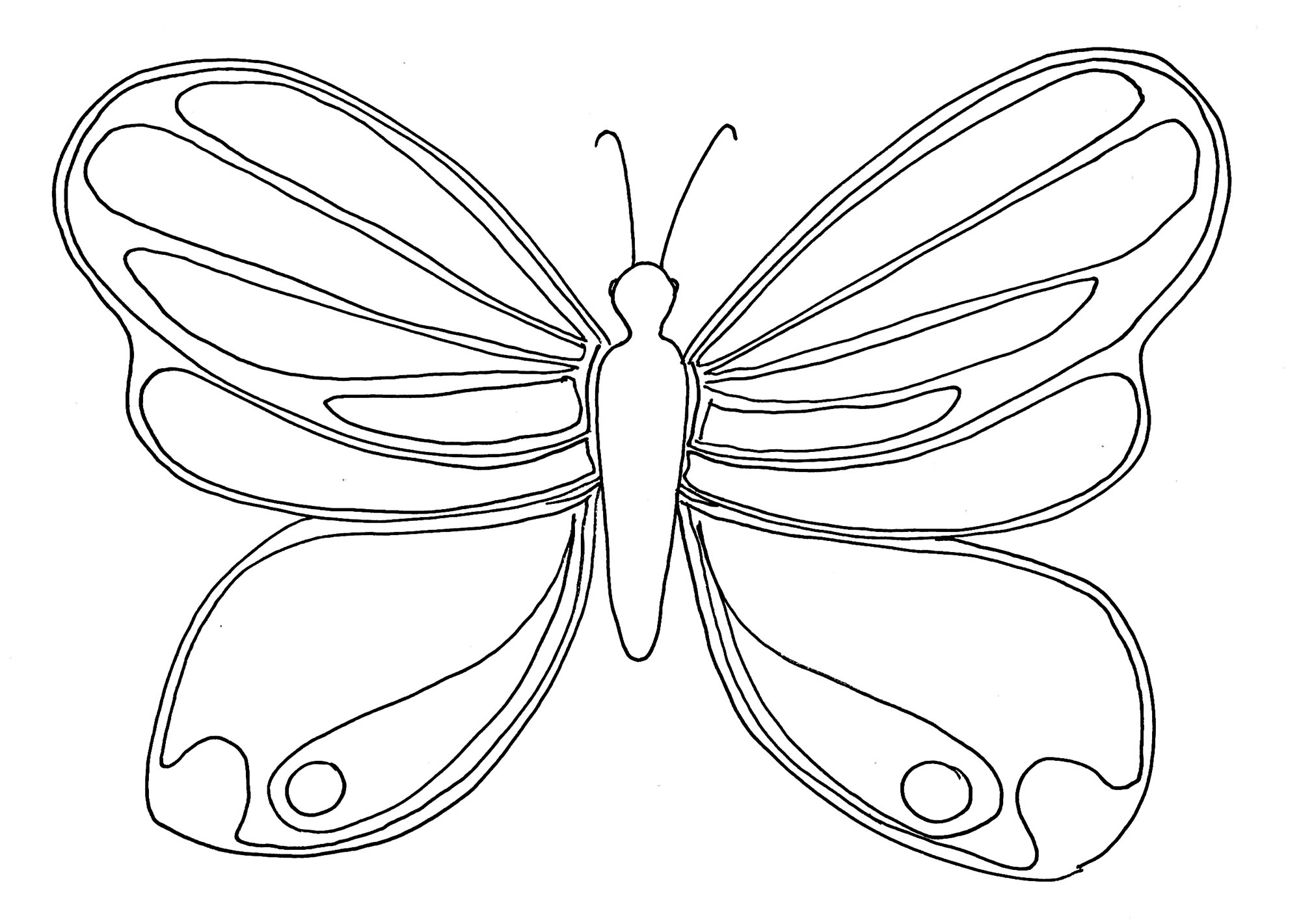 Simple Coloriage De Papillon