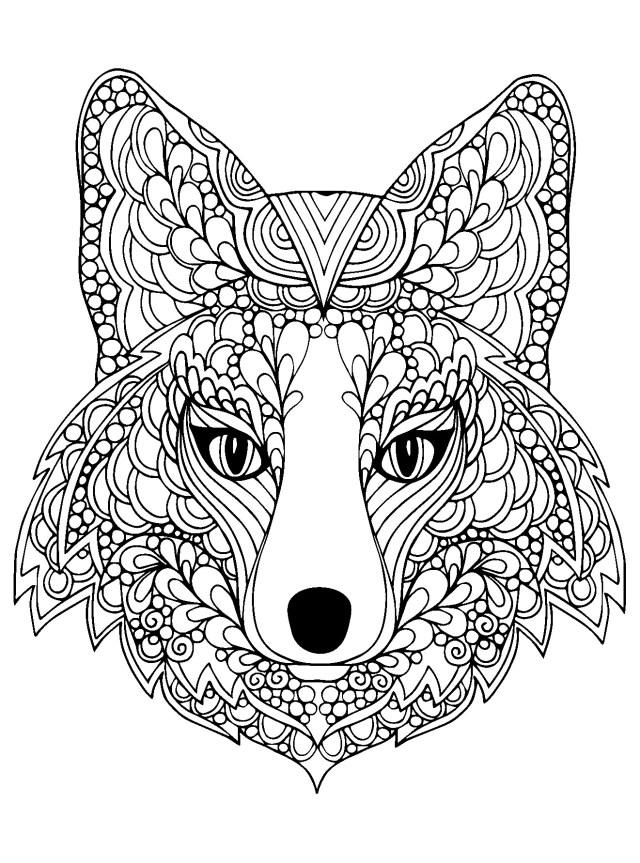 Tete renard - Coloriage de Renards - Coloriages pour enfants