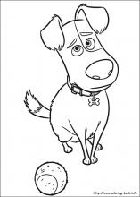 The Secret Life Of Pets Coloring Pages On Coloring Book Info