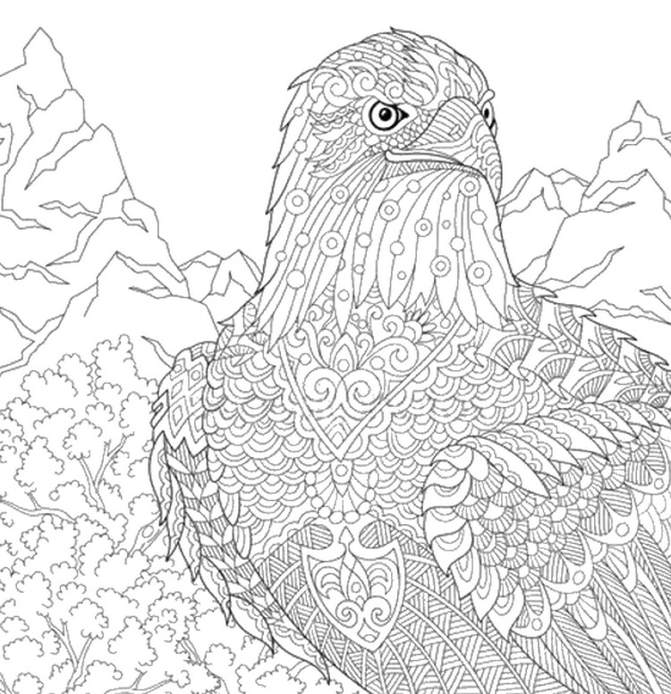 Art Therapy Coloring Page Mountain Eagle 13