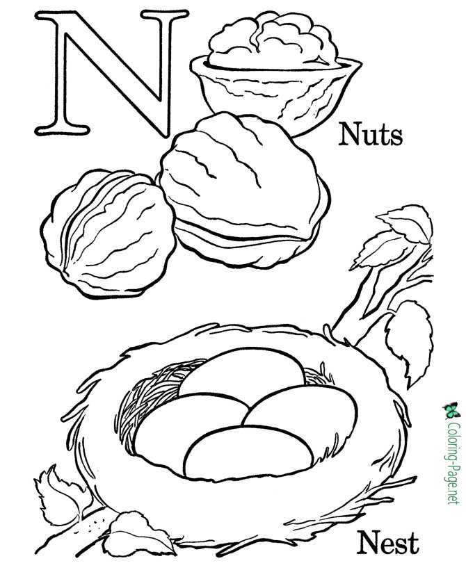 alphabet coloring pages  n is for nest