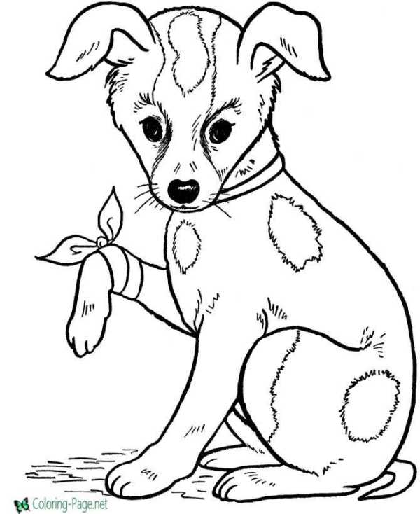 printable dog coloring pages # 2