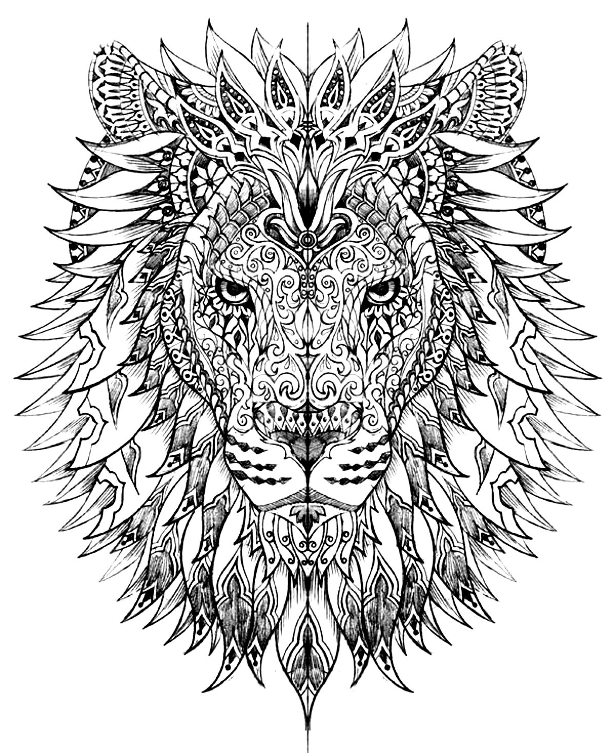 animals coloring pages for adults coloring adult difficult