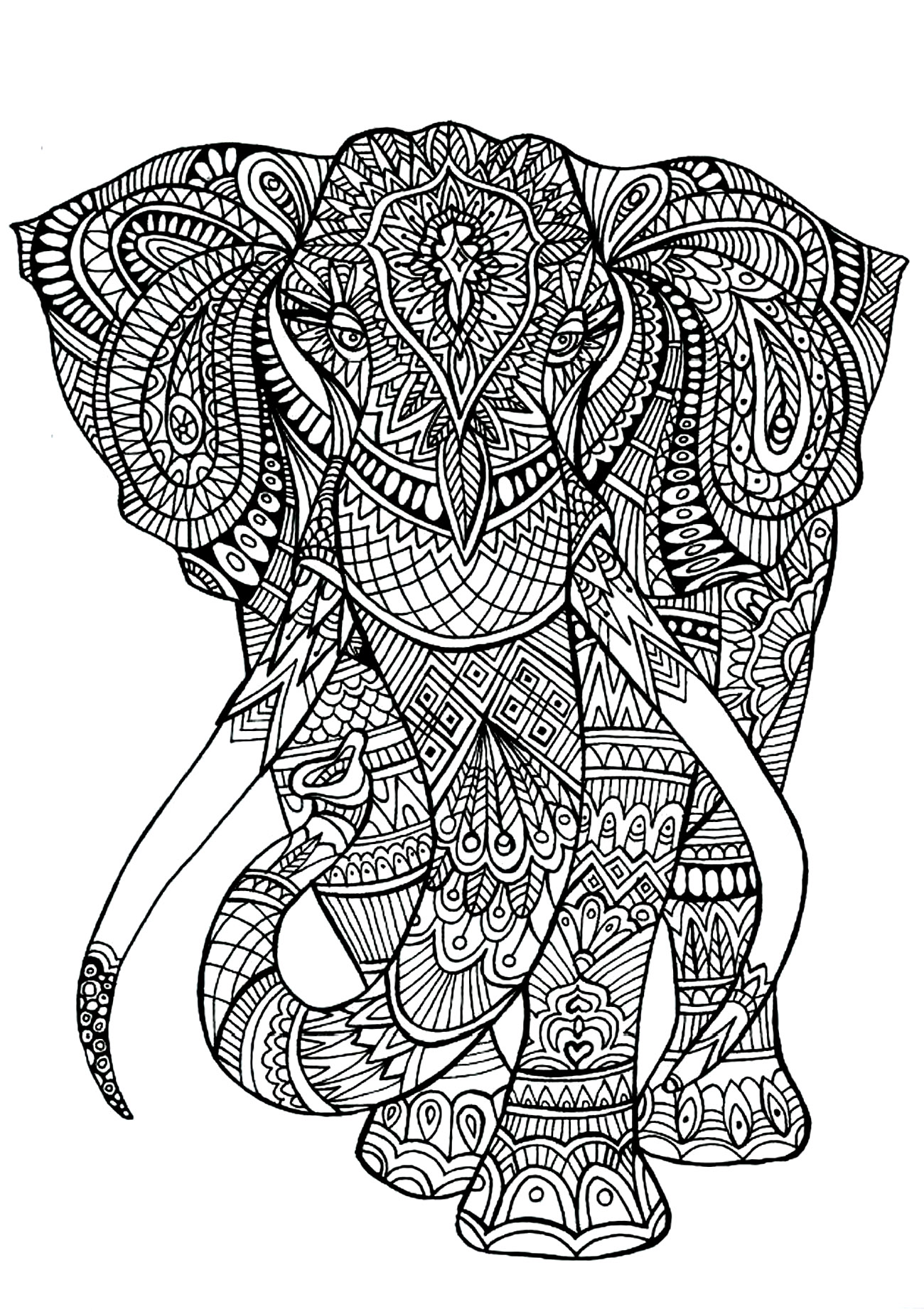 animals coloring pages for adults coloring adult elephant