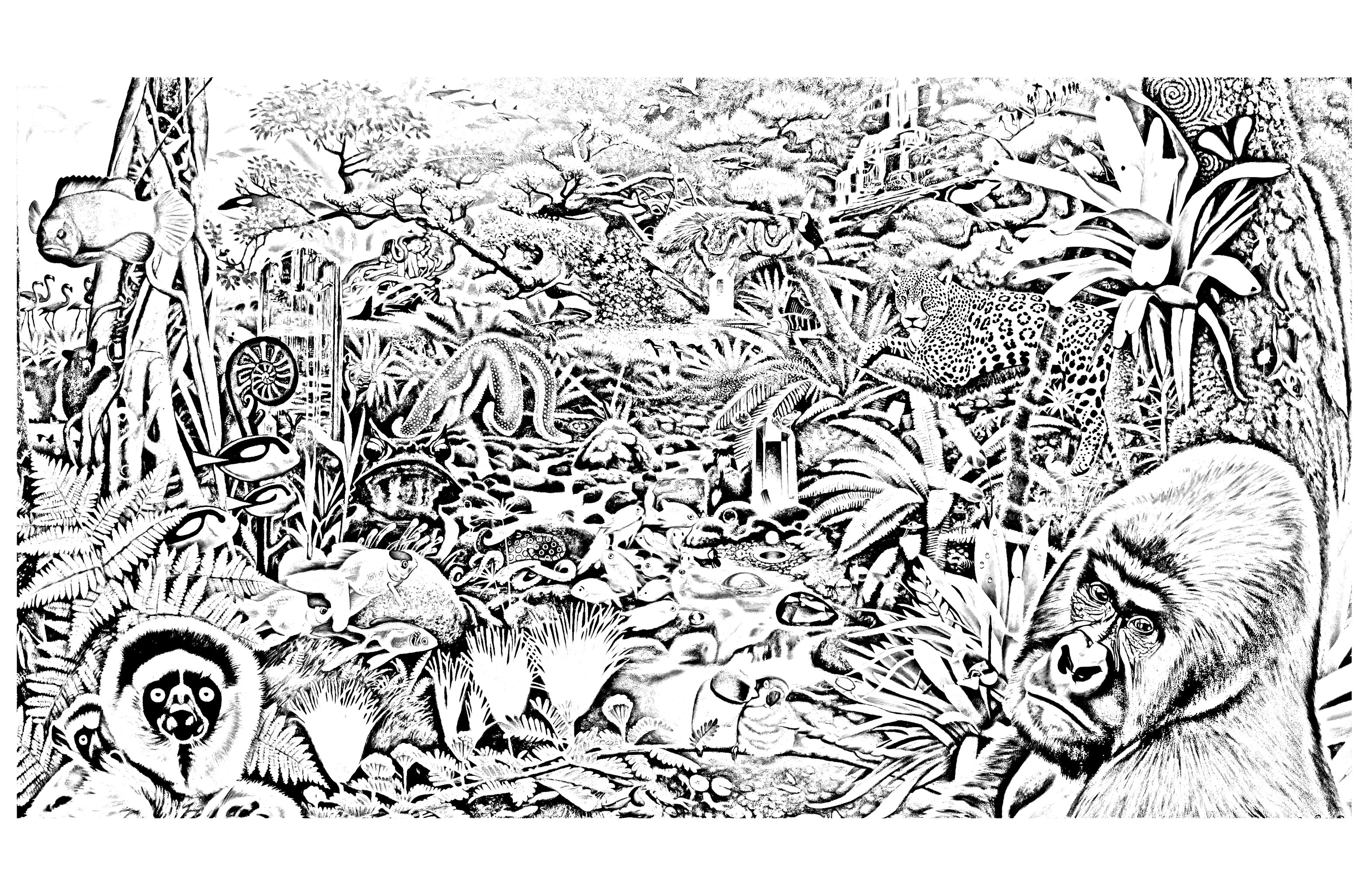 jungle amp forest coloring pages for adults coloring jungle