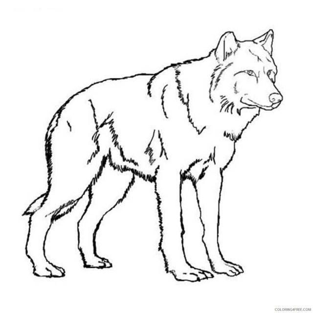 wolf coloring pages free to print Coloring29free - Coloring29Free.com