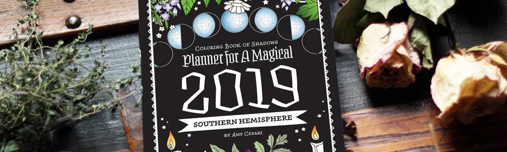 Southern Hemisphere 2019 Planner With Special Guest