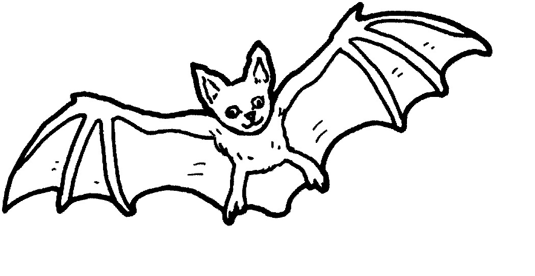 printable bat coloring pages coloring me