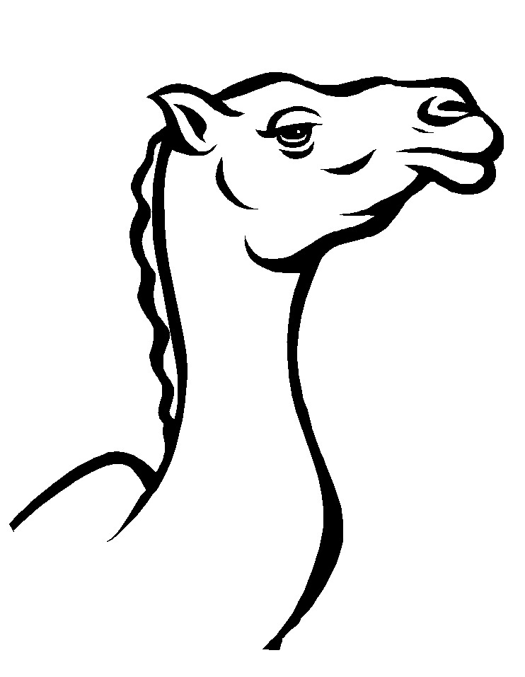 camel face coloring page coloring me