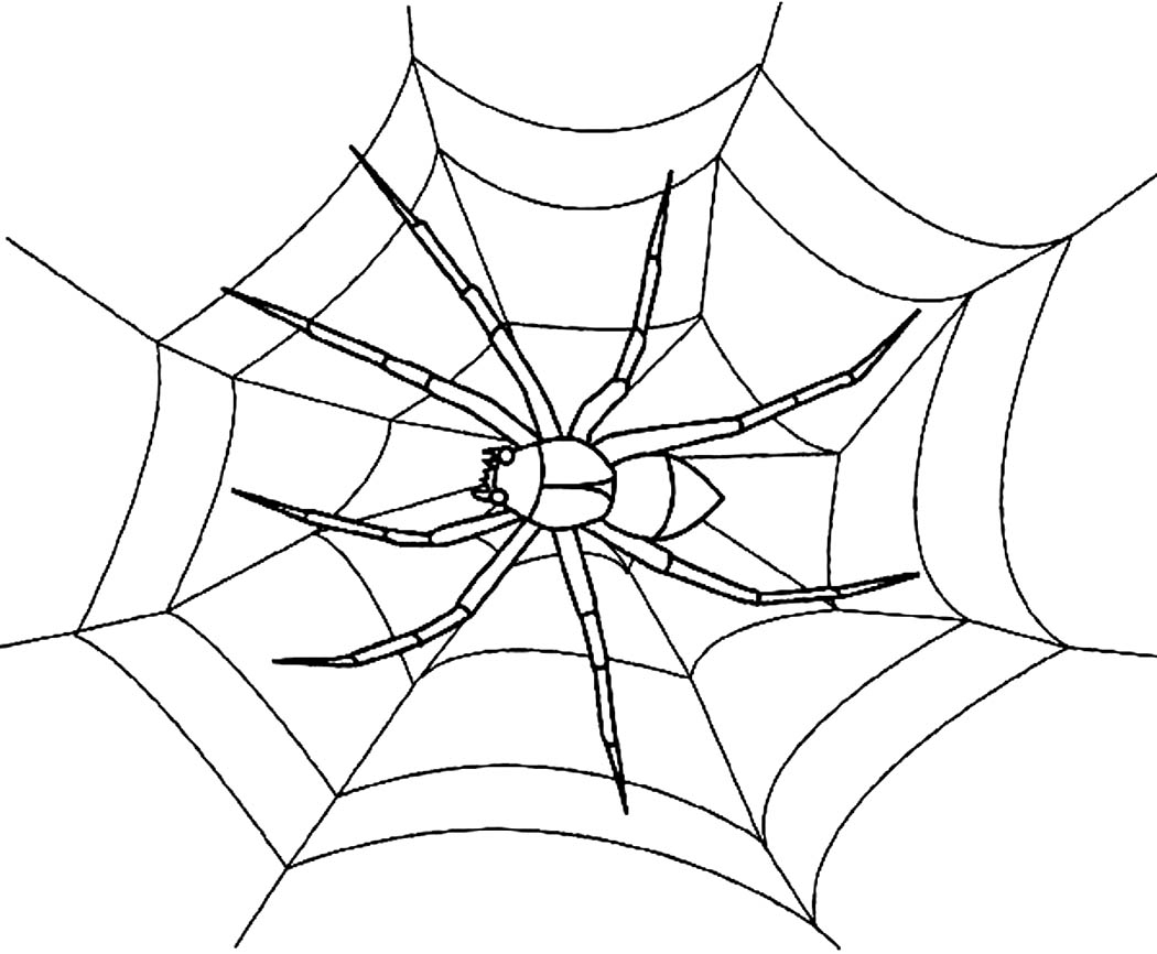 spider web coloring pages pritable printable spider web coloring pages