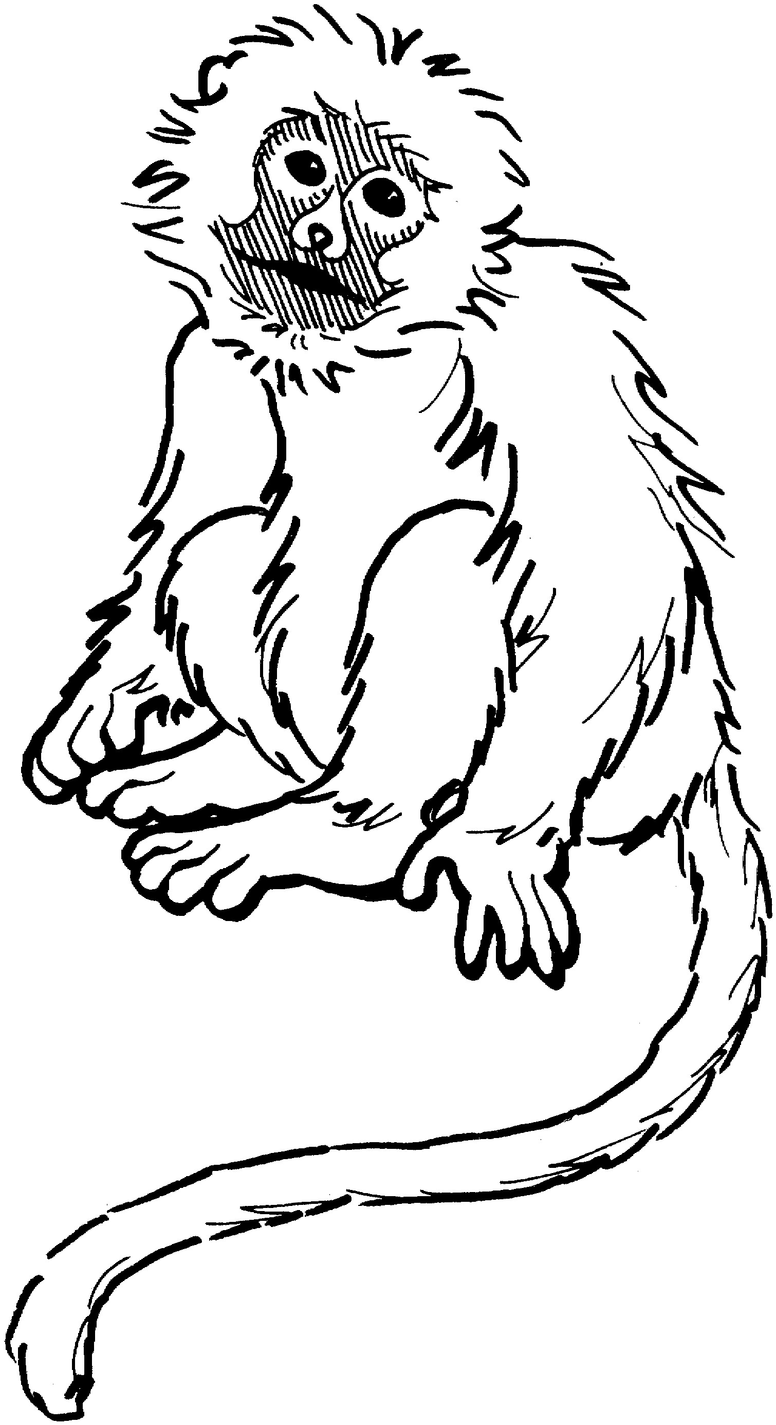 monkey coloring pages to print monkey coloring pages monkey coloring