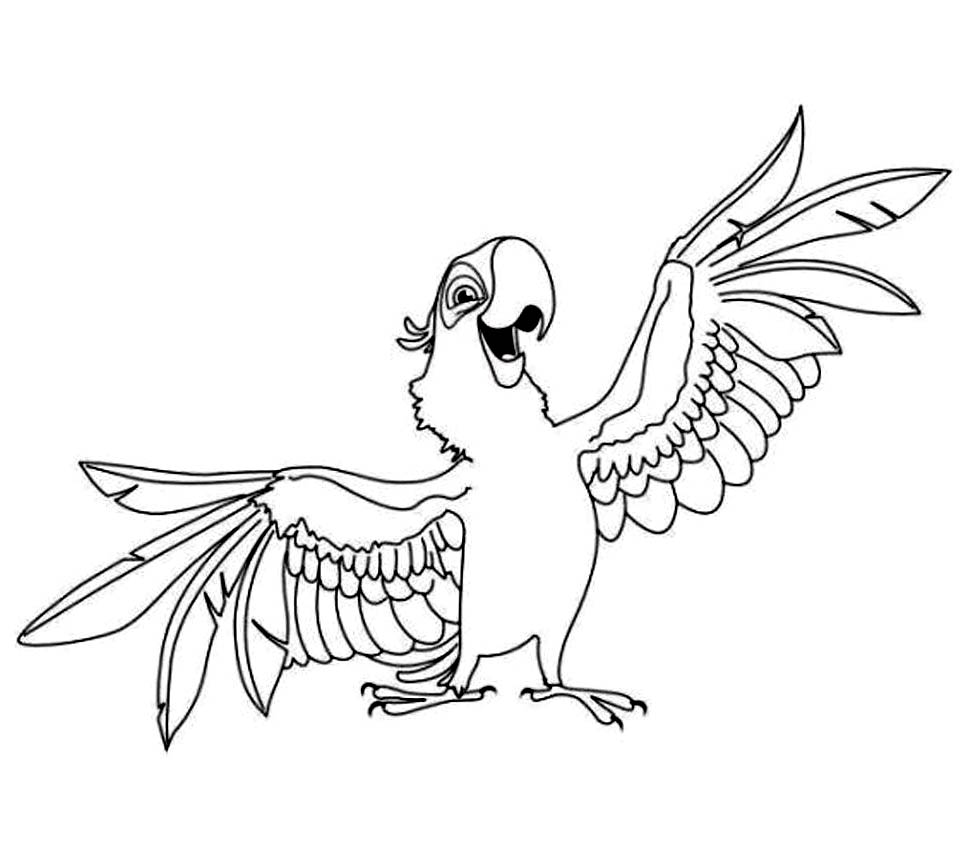 image parrot coloring page for kids images parrot coloring page