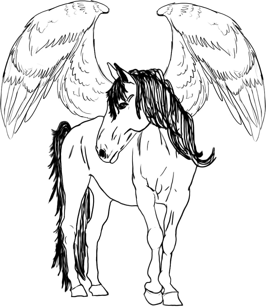 pegasus coloring pages | Unicorn coloring pages, Horse coloring ... | 1043x902
