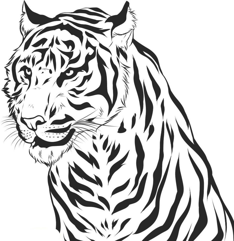 Printable Tiger Coloring Pages Coloringme Com