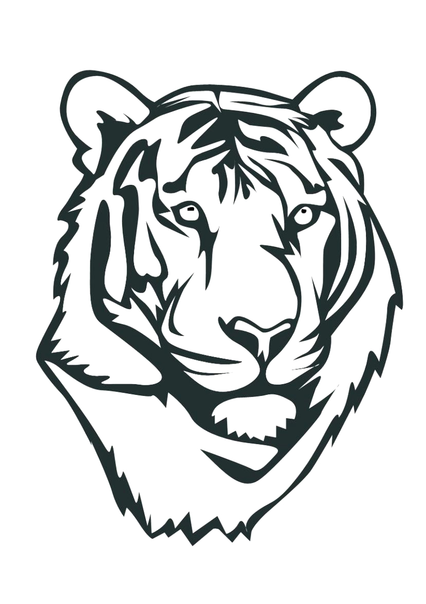 tiger cub coloring pages free cooloring com