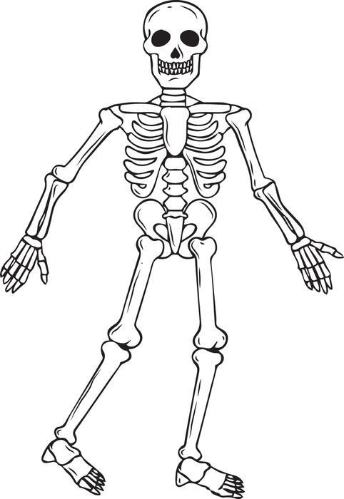 printable skeleton pages me
