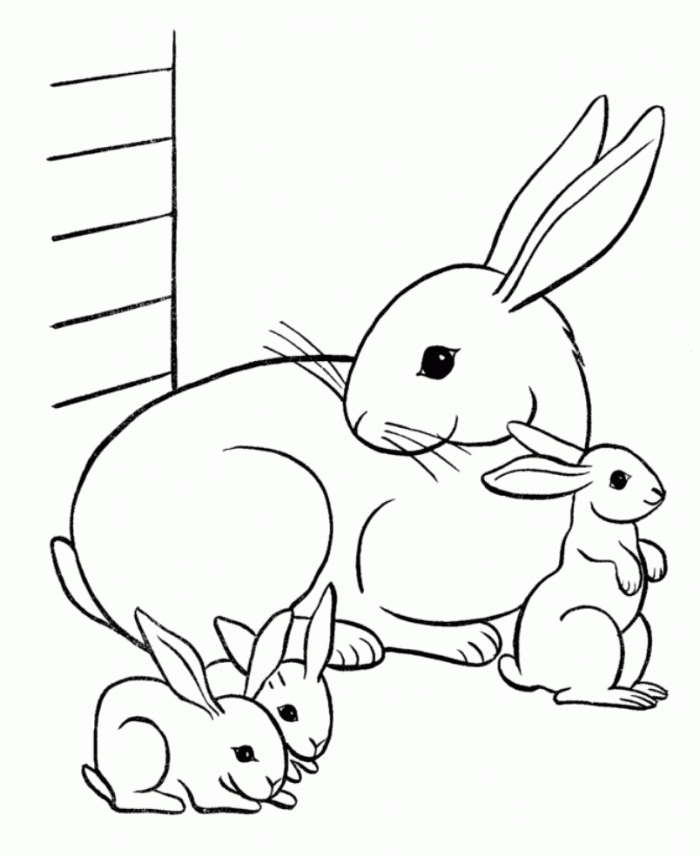 rabbit coloring pages bunny rabbit coloring pages coloring page