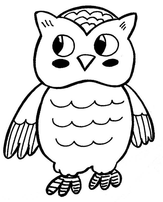 coloring page owl sleepy owl owl coloring pages owl cute