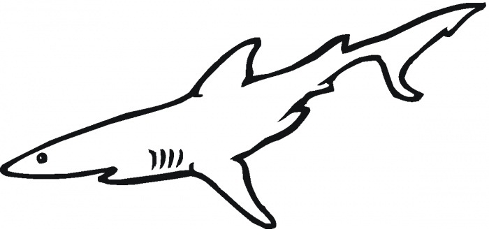 coloring pages of sharks coloring pages shark coloring pages sharks
