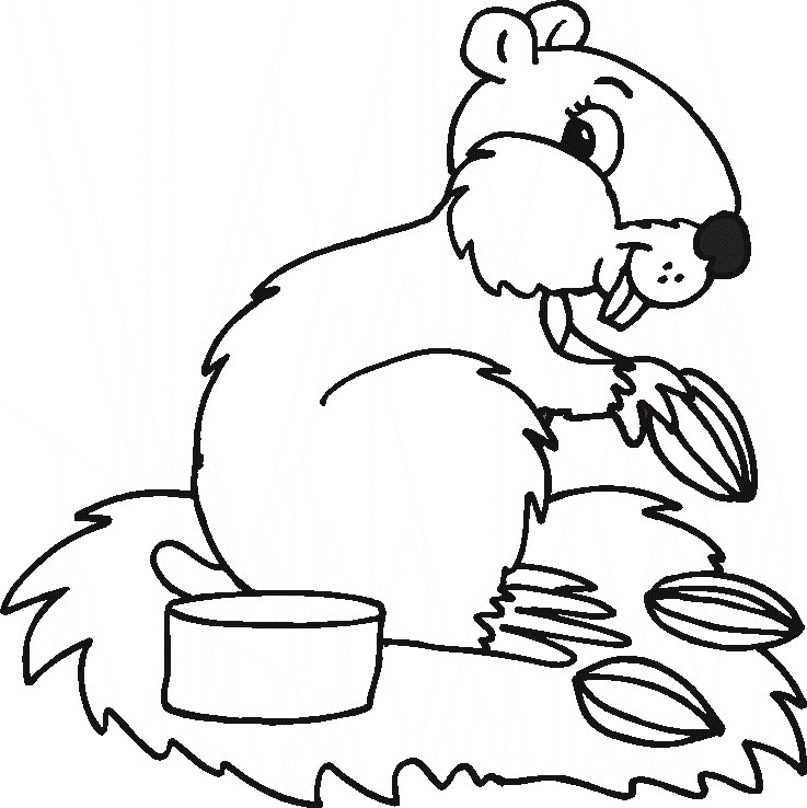 color animals coloring page coloring pages for kids