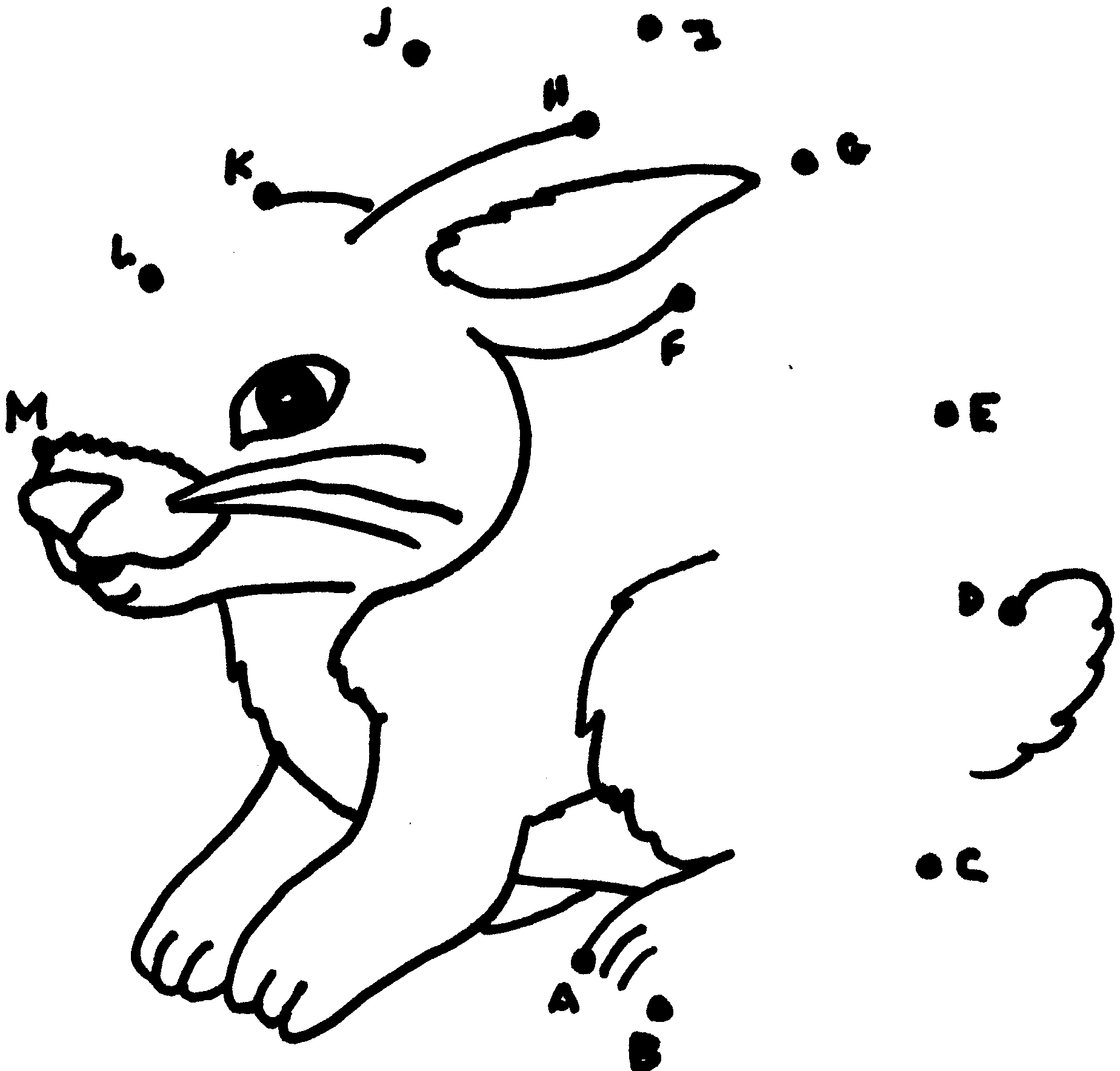 Rabbit Dot To Dots Coloring Page