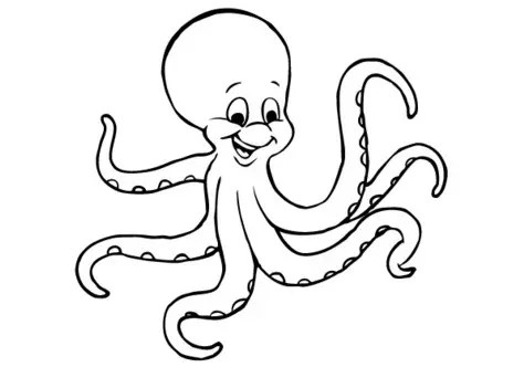 Cartoon Octopus Coloring Page Amp Coloring Book