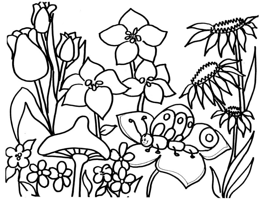 Flower Garden Coloring Page Amp Coloring Book