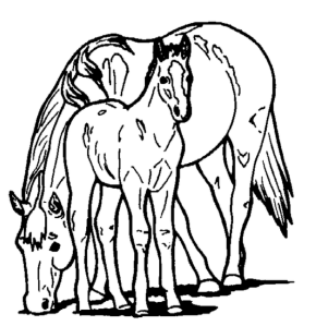 mom and baby horse coloring pages sketch coloring page