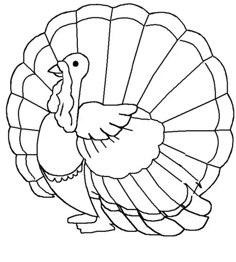 thanksgiving turkey coloring page amp coloring book