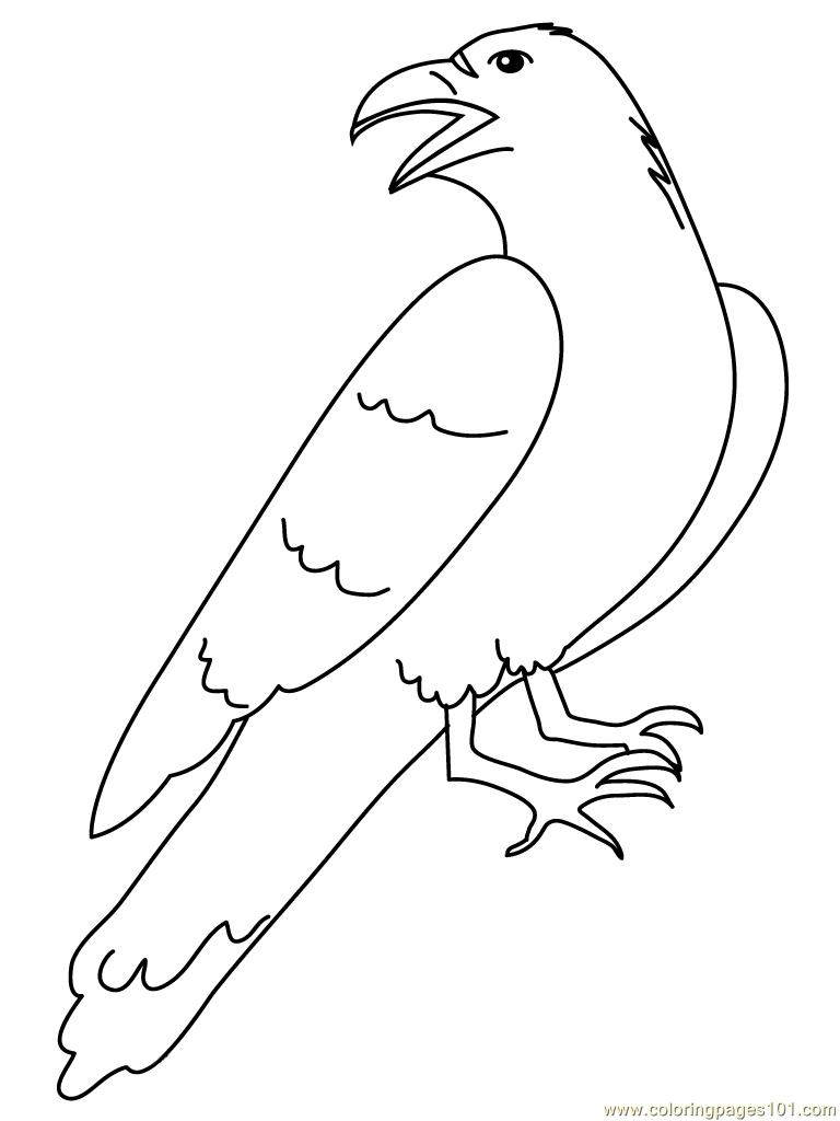 Crow Luking Back Coloring Page Free Crow Coloring Pages