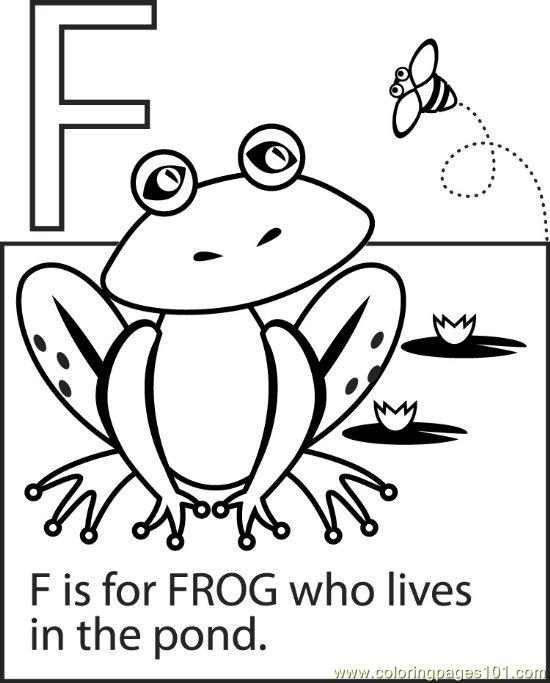 coloring pages frog amphibians gt frog free printable coloring page