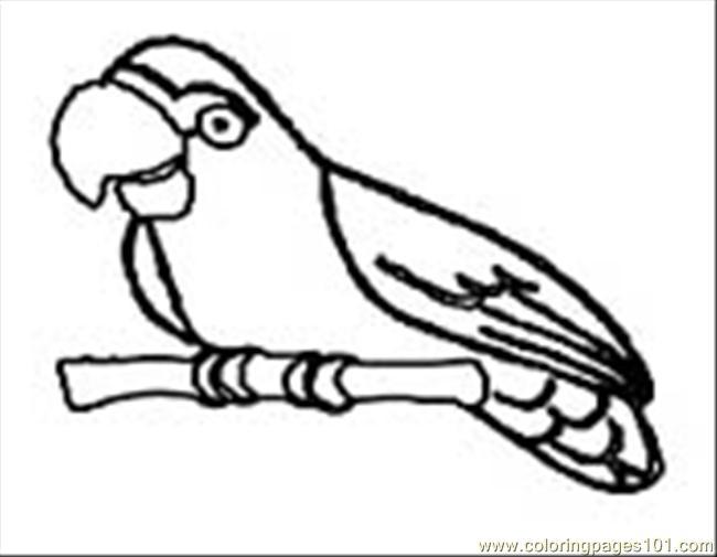 coloring pages parrot09 birds gt parrots free printable coloring