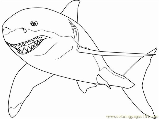 coloring pages great white shark (fish > shark)  free