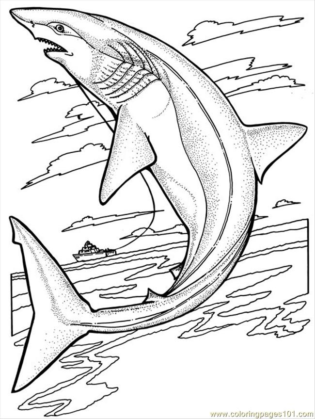 shark coloring pages online cooloring com