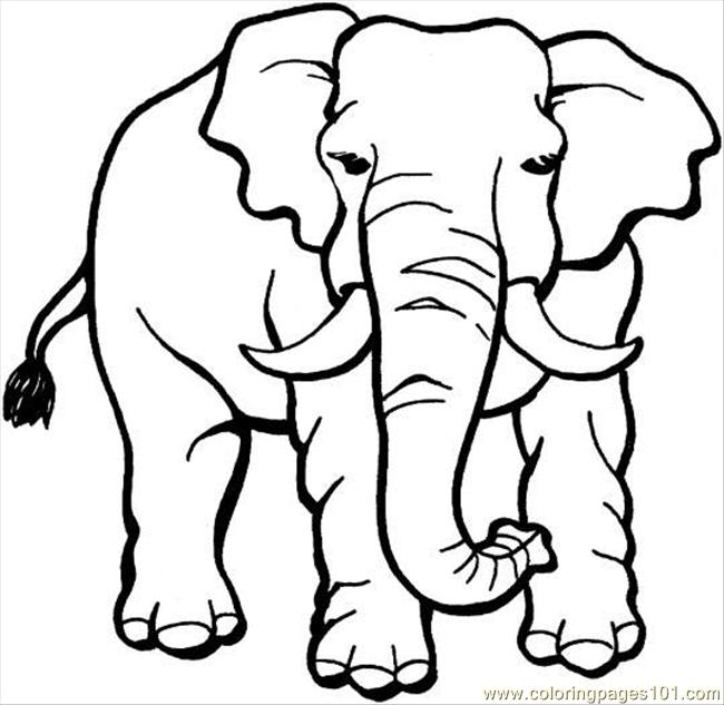elephant 18 coloring page coloring page free elephant coloring