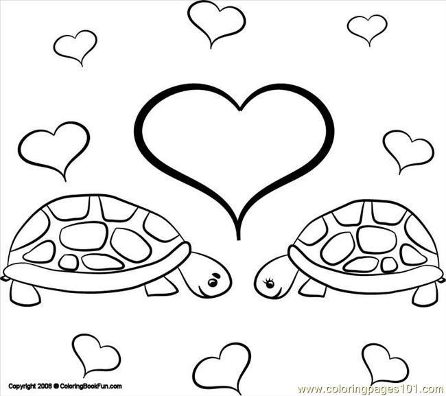 turtle pictures to color coloring pages of turtles turtle color