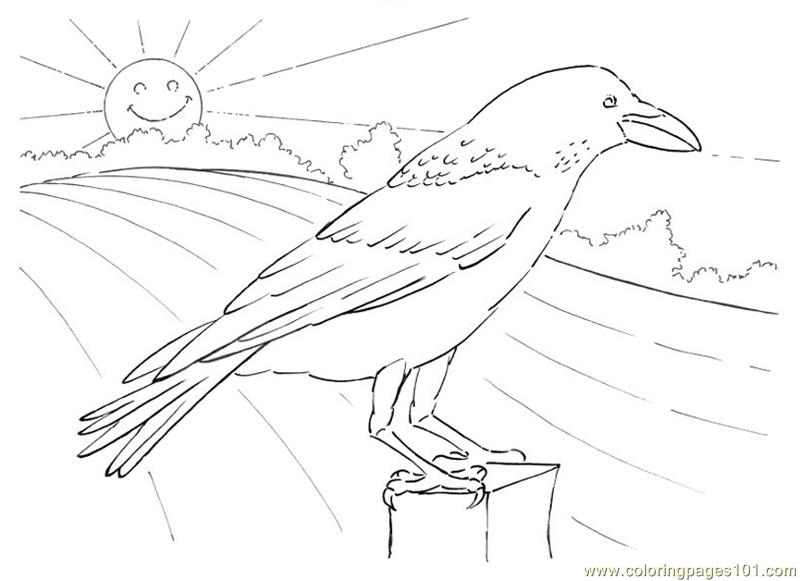 Crow Looking Coloring Page Free Crow Coloring Pages