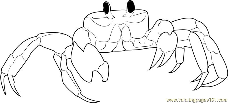Ghost Crab Coloring Page Free Crab Coloring Pages