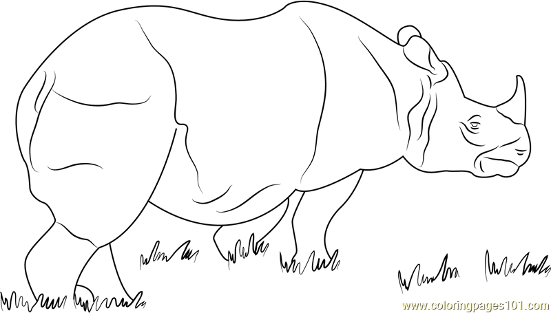 Rhino Coloring Page Rhinoceros Free Colouring Pages