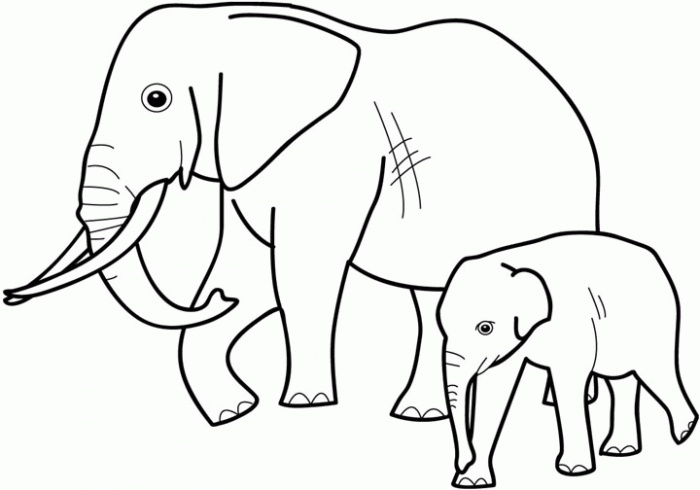 elephant 2 colouring pages