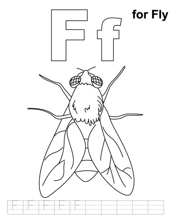 fly worksheet coloring page coloring sky