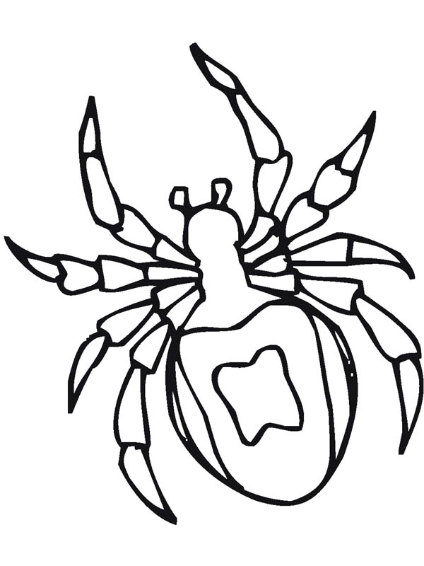 Spider insect coloring page coloring sky, i love you dad coloring pages