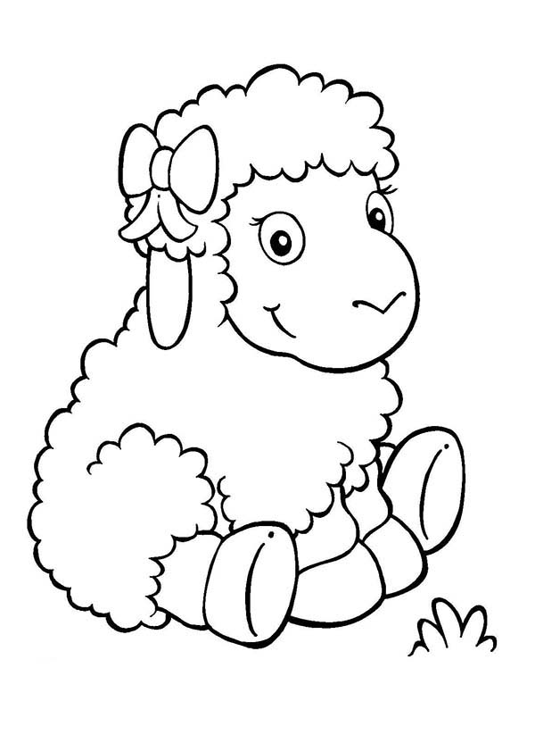 adorable baby sheep coloring page coloring sky