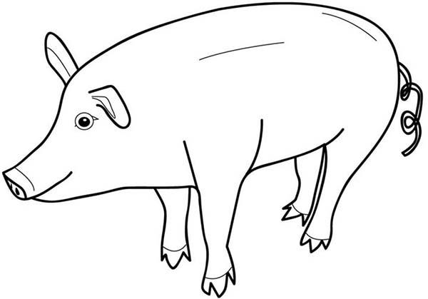 piggy coloring pages miss piggy colouring pages page 2 piggy