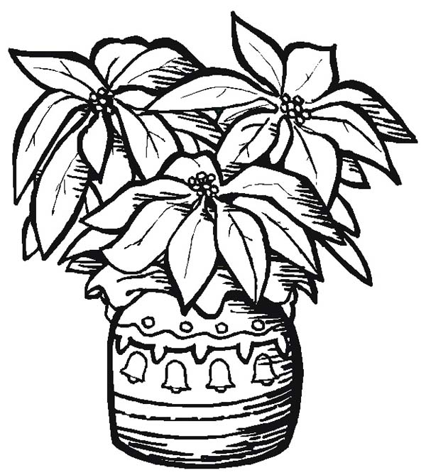 pottery poinsettia for poinsettia day coloring page