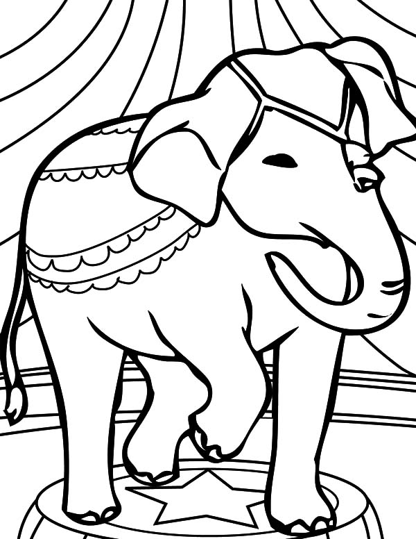 thirsty african elephant coloring pages coloring sky