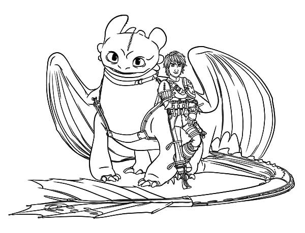 hiccup and toothless are bestfriend in how to train your dragon