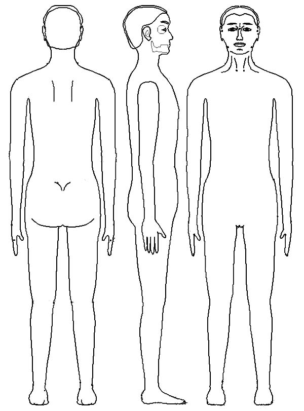 human body template coloring pages  coloring sky