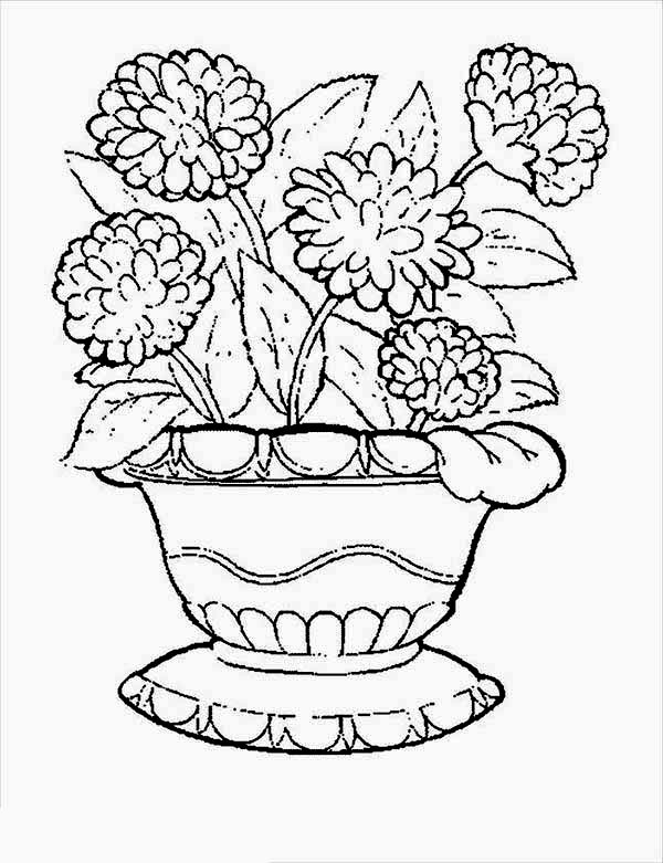 carnation flower carnation in flower pot coloring page